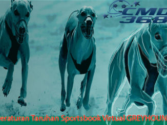 Peraturan Taruhan Sportsbook Virtual GREYHOUND